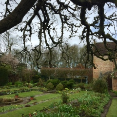 The sunken Tudor garden