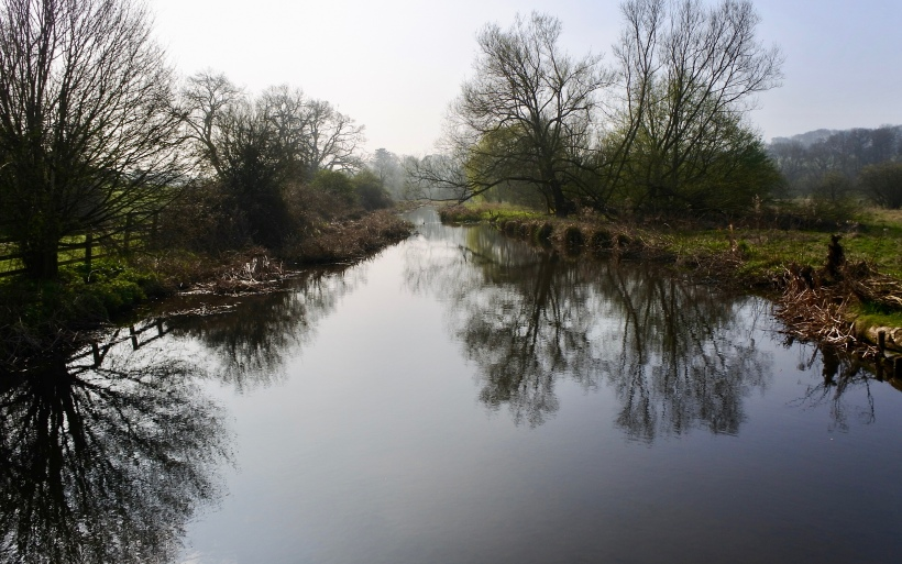 River chess looking calm